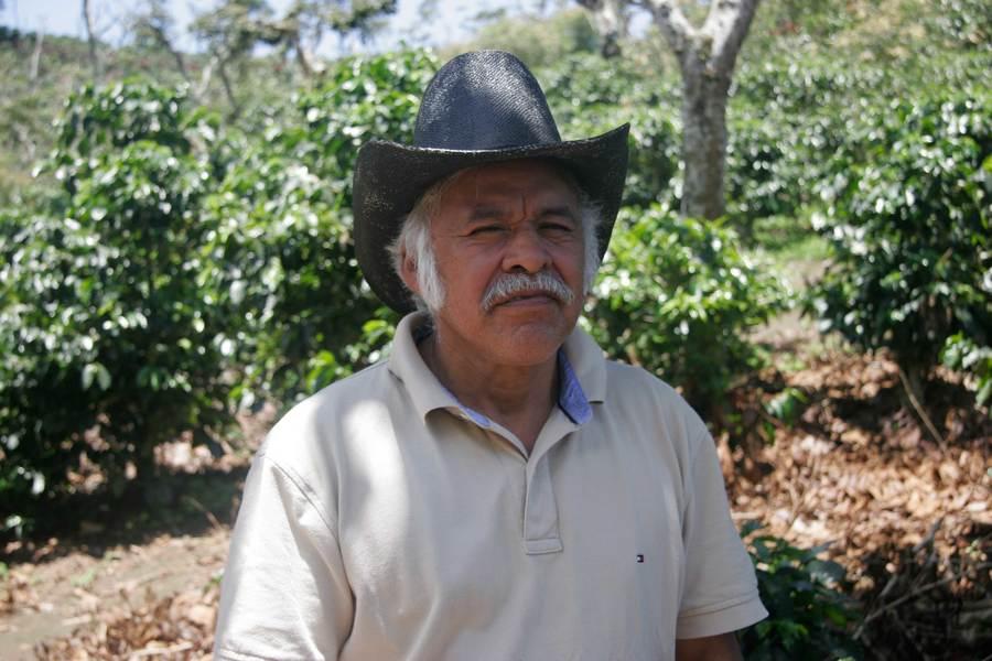 Guatemala Finca Santa Isabel