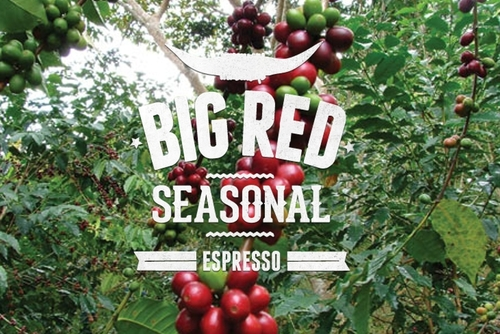 Big Red Seasonal Blend